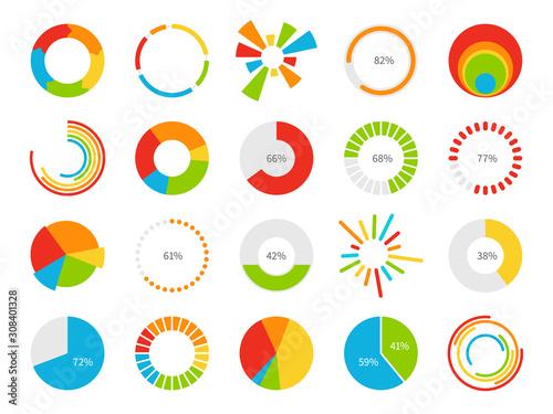 Pie charts Canvas Print