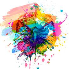 Eagle Head And Color  Backgrou...