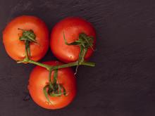 Vine Tomatoes's Still Life