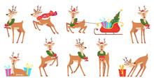 Cartoon Deer. Winter Celebrati...
