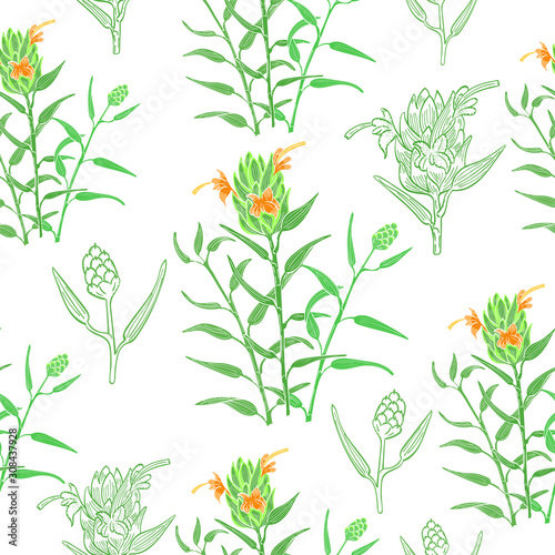 Fototapeta Seamless Background with Color Ginger Plant Parts obraz na płótnie