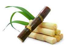 Single Object Of Sugar Cane Is...