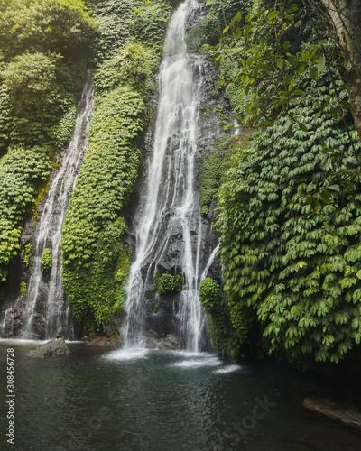 Fototapeta Beautiful waterfall in Bali in its ecosystem in green obraz na płótnie