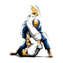 Brazilian Jiu-Jitsu Action 5