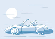 Young Woman Driving A Cabriolet Illustration