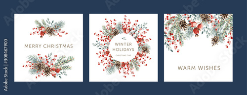 Obraz Nature design square greeting cards template, circle frame, text Winter Holidays, Warm Wishes, Merry Christmas, white background. Green pine, fir twigs, cones, red berries. Vector xmas illustration - fototapety do salonu