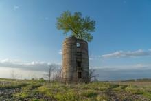 Grain Tree Silo