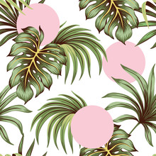 Tropical Green Palm Leaves And Monstera Leaves Seamless Pattern Pink Rounds Background. Exotic Jungle Wallpaper.