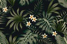 Tropical Vintage Green Leaves Plumeria Flowers Seamless Pattern Black Background. Exotic Jungle Wallpaper.