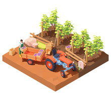 Vector Isometric Winemaker At ...