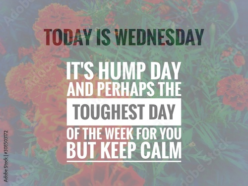 Image with wordings or quotes about wednesday, hump day Fototapet