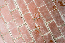 Floor With Old Terracotta Tile...