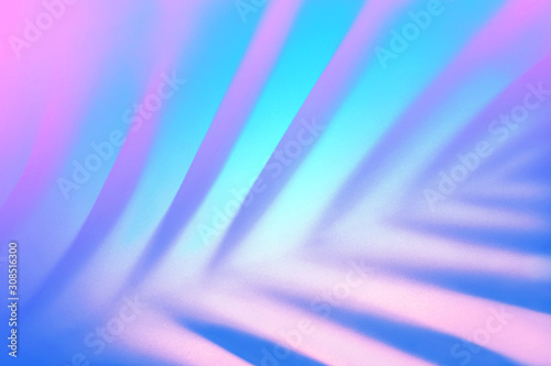 Blue tropical palm leaf shadow in trendy duotone pink neon background.