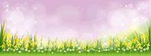 Vector Summer Nature Background With Daffodils, Tiny Daisy Flowers And Green Grass Fields. Spring Background With Abstract Blurry Bokeh Light Effect. Tamplate Banner For Easter Or Spring Background