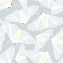 Vector Seamless Pattern Of Whi...