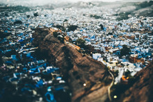 Blue City In Jodhpur, Rajasthan, India, View From The Top. Many Blue Houses. Tilt Shift.