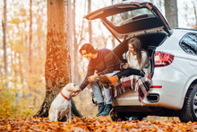 Young Couple Have A Picnic With Their Dog Near Automobile In The Autumn Light Forest.