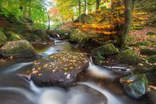 Padley Gorge In Autumn, Peak District National Park, Derbyshire