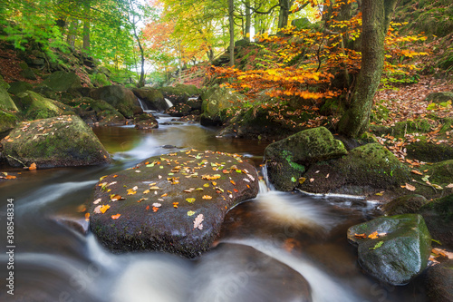 Padley Gorge in autumn, Peak District National Park, Derbyshire