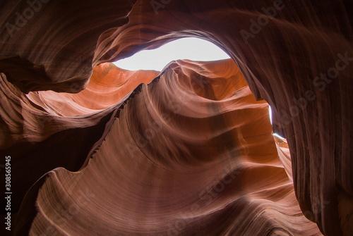 Garden Poster Antelope Antelope Canyon, USA