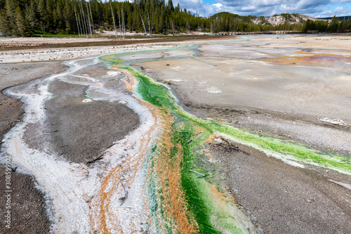 Lime-green Cyanidium algae in Yellowstone Canvas Print