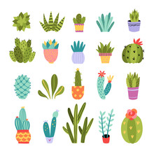 Cactus Vector Collection. Cute...