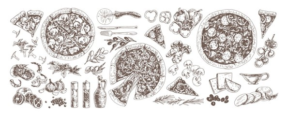 Pizza and ingredients monochrome set. Pepperoni, pizza with mushrooms and seafood hand drawn vector illustrations collection. Shrimp, garlic, chanterelles, cherry tomatoes and broccoli.