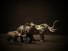 Isolated Elephants Toy Figurine