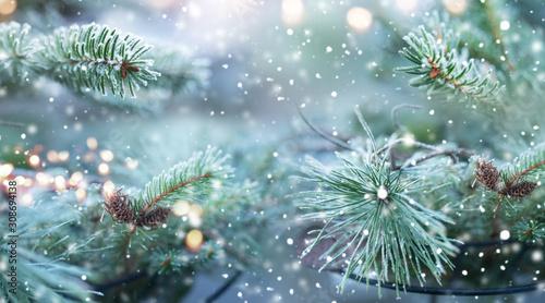 Fotografía Natural winter scenery