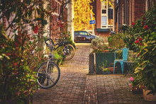 Cozy Dutch Street In Haarlem Town