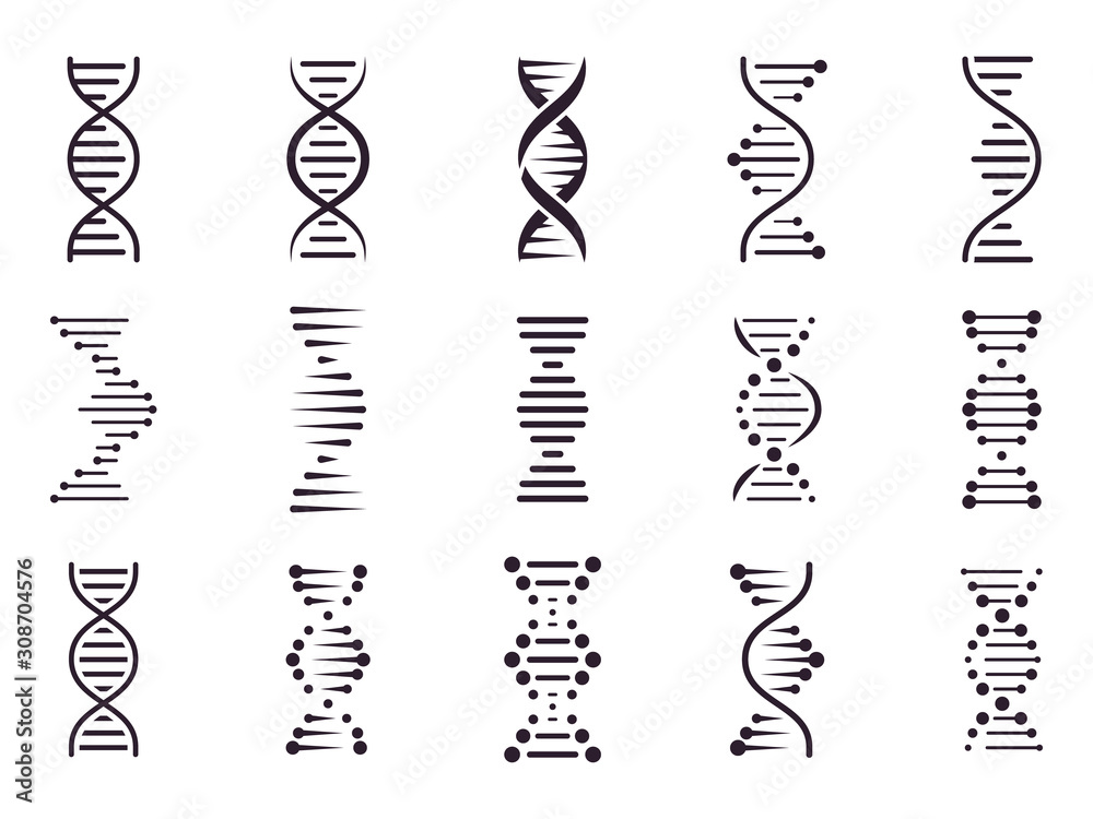 Fototapeta Spiral DNA icon. DNA molecule helix spiral structure, medical science chromosome concept, biology genetic symbols isolated vector icons set. Biochemistry. Deoxyribonucleic acid chain. Genetic code