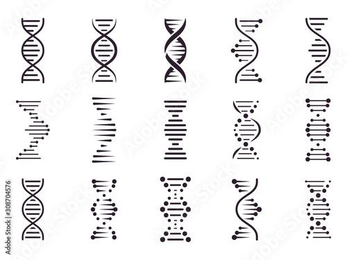 Photo Spiral DNA icon