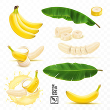 3d Realistic Vector Set Of Banana Fruits, Bunch Of Bananas, Peel, Peeled Banana, Slices And Halves, Leaves From A Banana Palm, Splash Of Banana In Milk Or Juice
