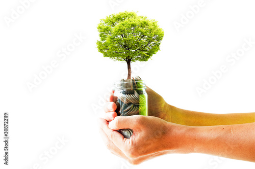 Fotografía Tree glowing on coins inside jar with two hand holding  on  white background