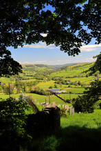 Summer View Through Nidderdale ANOB, North Yorkshire, England.