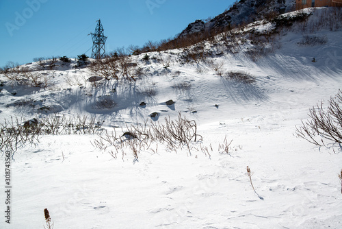 Fényképezés 雪原