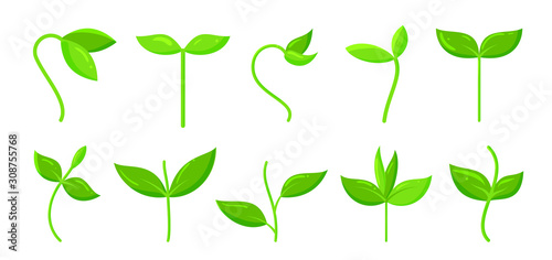Vászonkép Spring green grass sprout plant cartoon icon set