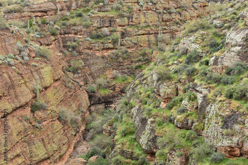 Spring landscape of an arroyo along the Apace Trail, Tonto National Forest, Ariz Wallpaper Mural