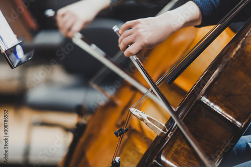 Side views of classical instruments - violin, double basses, cellos, closeup of hands - 308786582