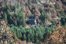 Secluded House In The Middle Of The Forest On A Hillside Surrounded By Trees