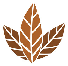 Tobacco Leaves Vector Icon. Fl...