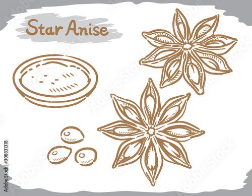 Fototapeta Star anise isolated on white. obraz