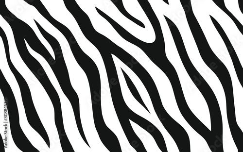 Zebra stripes seamless pattern. Tiger stripes skin print design. Wild animal hide artwork background. Black and white vector illustration. - 308845321