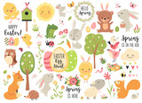Fototapeta Fototapety na ścianę do pokoju dziecięcego - Spring and Easter collection of cute animals, flowers and decorations. Perfect for poster, card, scrapbooking , tag, invitation, sticker kit. Hand drawn vector illustration.
