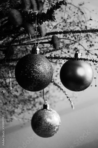 Fototapeta Christmas toy purple ball with dry plants obraz na płótnie