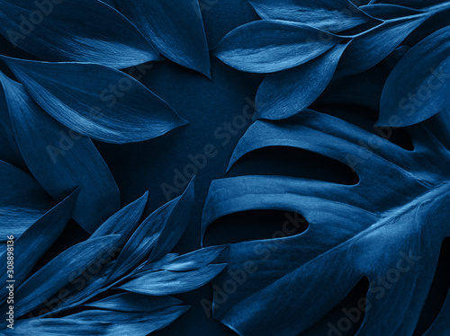 Tropical leaves and monstera leaf toned classic blue color