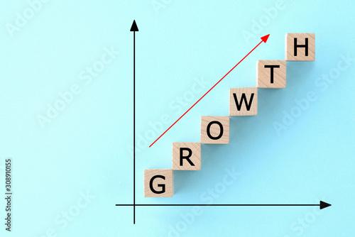 Canvastavla ビジネスイメージ―成長