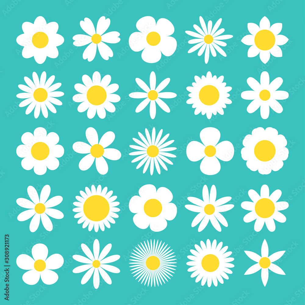 Fototapeta Camomile big set. White daisy chamomile icon. Cute round flower plant nature collection. Love card symbol. Growing concept. Decoration element. Flat design. Green background. Isolated.