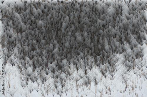 Valokuva  Large snow storm formed