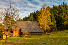 An Ancient Cottage At Forest N...